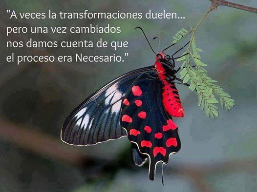 Asesoramiento Psicologico Gratuito¡No te lo puedes perder! Dra Marilo Velez....www.PsicologiaMariloVelez.com